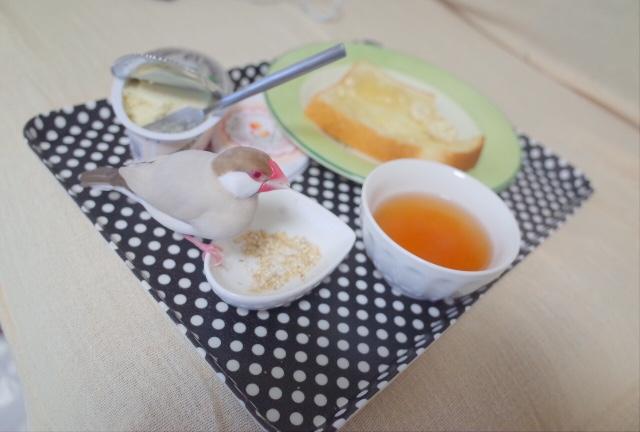 よつ葉のメープル&バター