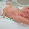 生後4日のアオ